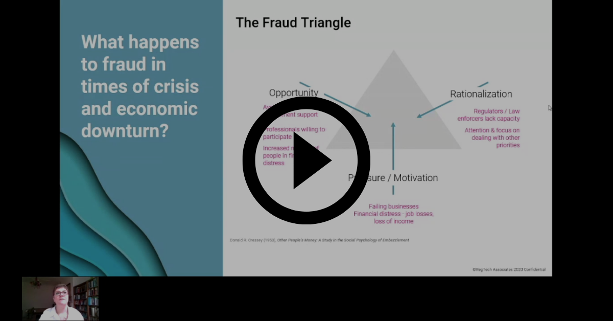 Crises, fraud and the use of AI webinar
